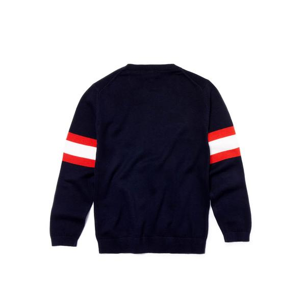 Kids' Lacoste Design Crew Neck Cotton And Wool Sweater