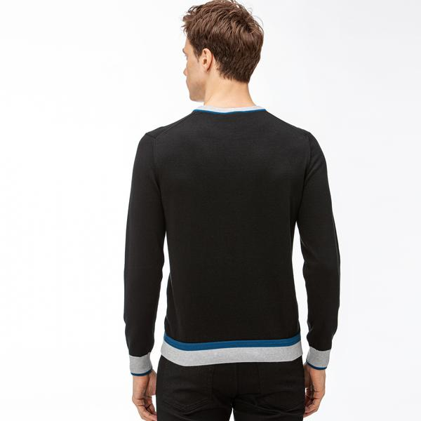 Lacoste Men's sweater