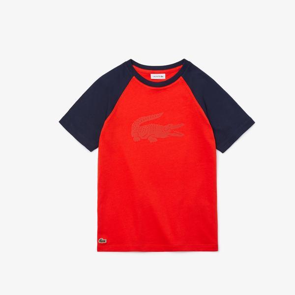 Lacoste Chłopięcy Bawełniany Dwukolorowy T-Shirt Z Nadrukiem Krokodyla